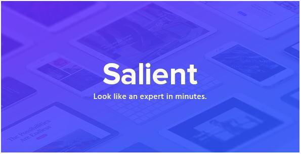 Salient template wordpress themeforest