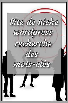 site de niche wordpress