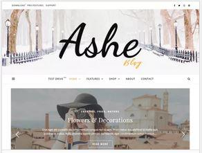ashe -thème wordpress gratuit personnalisable