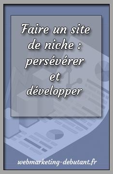 faire un site de niche - persévérer et developper