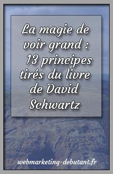 Livre de motivation La-magie-de-voir-grand-13-principes-tirés-du-livre-de-David-Schwartz